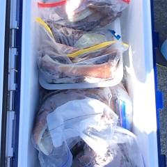 8月17日(木) 一日便・スルメイカ釣りの写真その9