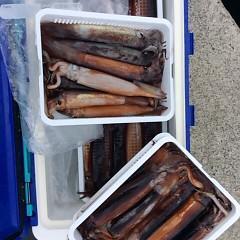 8月18日(金)スルメイカ釣りの写真その5