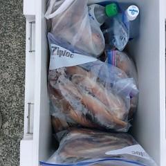8月18日(金)スルメイカ釣りの写真その9