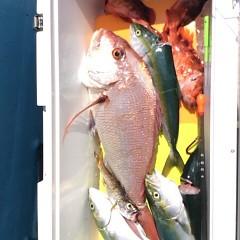 8月30日(水) 午前便・タテ釣りの写真その7