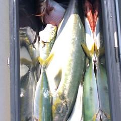 8月30日(水) 午前便・タテ釣りの写真その8