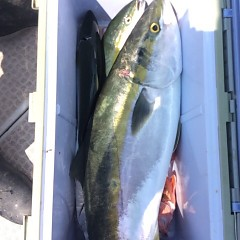 8月30日(水) 午前便・タテ釣りの写真その10