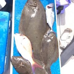 9月13日(水) 午前便・タテ釣りの写真その12