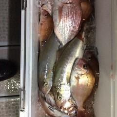 9月20日(水)午後便・ウタセ釣りの写真その2