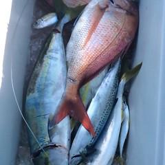 9月 21日(木)午前便・タテ釣りの写真その4