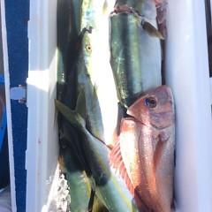 9月 21日(木)午前便・タテ釣りの写真その8
