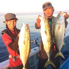 9月 25日(月)午後便・ウタセ真鯛の写真その1