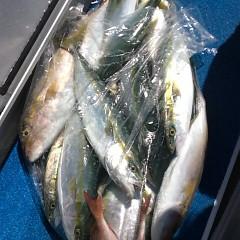 9月 29日(金)午前便・タテ釣りの写真その7