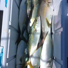 9月 29日(金)午前便・タテ釣りの写真その11