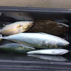10月1日(日)午前便・タテ釣りの写真その5