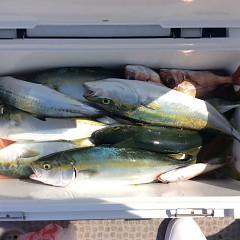 10月1日(日)午前便・タテ釣りの写真その6