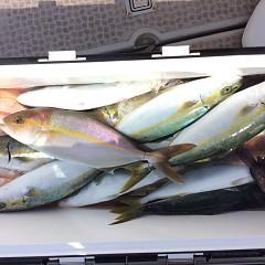10月1日(日)午前便・タテ釣りの写真その8