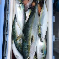 10月2日(月)午前便・タテ釣りの写真その7