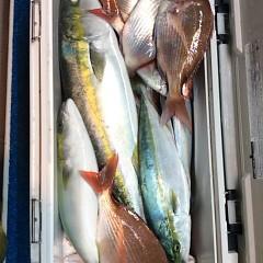 10月8日(日)午後便・ウタセマダイ釣りの写真その9
