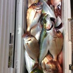 10月9日 (月)  午後便・ウタセ真鯛の写真その8