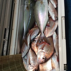 10月11日(水)午後便・ウタセ釣りの写真その4