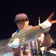 10月12日 (木)  午後便・ウタセ真鯛の写真その3