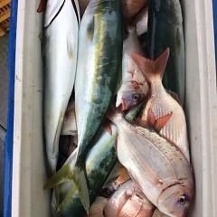 10月14日 (木)  午前便・ウタセ真鯛の写真その3