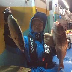 10月14日 (土)  午後便・ウタセ真鯛の写真その2