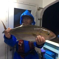 10月16日 (月)  午後便・ウタセ真鯛の写真その1