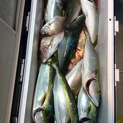 10月16日 (月)  午後便・ウタセ真鯛の写真その4
