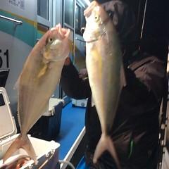 10月17日 (火)  午後便・ウタセ真鯛の写真その5