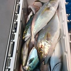 10月17日 (火)  午後便・ウタセ真鯛の写真その9