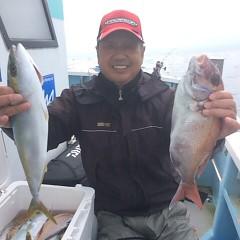 10月18日 (水)  午前便・ウタセ真鯛の写真その2
