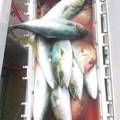 10月18日 (水)  午前便・ウタセ真鯛の写真その6