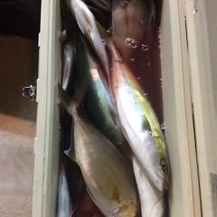 10月25日 (水)  午後便・ウタセ真鯛の写真その6