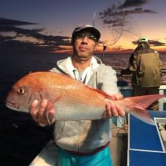 11月2日 (木)  午後便・ウタセ真鯛の写真その1