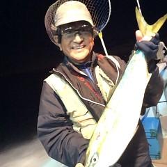 11月2日 (木)  午後便・ウタセ真鯛の写真その5