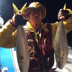 11月3日 (金)  午後便・ウタセ真鯛の写真その5