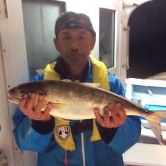 11月5日 (日)  午後便・ウタセ真鯛の写真その4