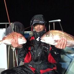 11月5日 (日)  午後便・ウタセ真鯛の写真その6