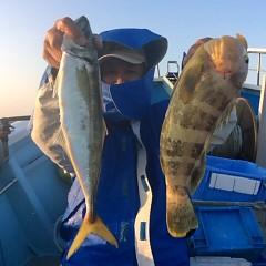 11月9日(木)  午後便・ウタセ真鯛の写真その5