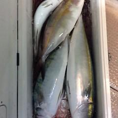 11月10日(金)午後便・ウタセマダイ釣りの写真その8