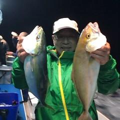 11月13日(月)  午後便・ウタセ真鯛の写真その2