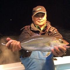 11月17日(金)  午後便・ウタセ真鯛の写真その3