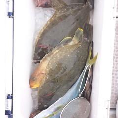 11月20日(月)午前便・ヒラメ釣りの写真その10
