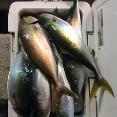 11月20日(月)午後便・ウタセマダイ釣りの写真その4