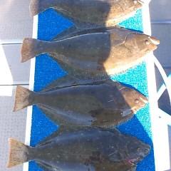 11月27日 (月) 午前便・ヒラメ釣りの写真その4