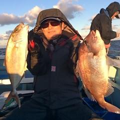 12月1日 (金)  午後便・ウタセ真鯛の写真その2