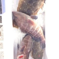 12月2日 (土)  午前便・ヒラメ釣り 午後便・ウタセ真鯛の写真その4