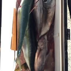 12月2日 (土)  午前便・ヒラメ釣り 午後便・ウタセ真鯛の写真その9