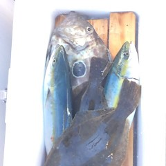 12月3日 (日)  午前便・ヒラメ釣り 午後便・ウタセ真鯛の写真その7