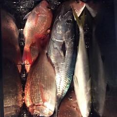 12月5日(月)午前便・ヒラメ釣り・午後便・ウタセ釣りの写真その5