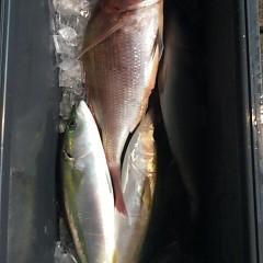 12月5日(月)午前便・ヒラメ釣り・午後便・ウタセ釣りの写真その6