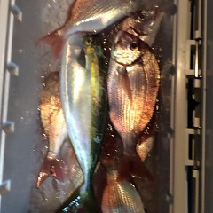 12月7日 (木)  午前便・ヒラメ釣りの写真その8