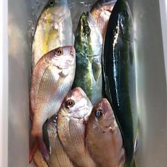 12月7日 (木)  午前便・ヒラメ釣りの写真その9